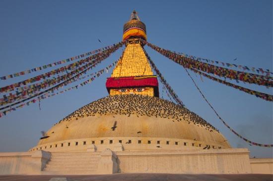 buddhist darshan tour